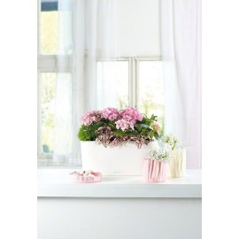 Кашпо LECHUZA DELTA 20 WINDOWSILL красное