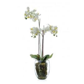 Композиция Орхидея Фаленопсис белая куст 85 см