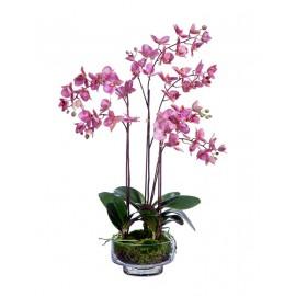 Композиция Орхидея Фаленопсис темно-сиреневая 4 ветки
