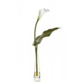 Композиция Majesty (белая калла с листом)