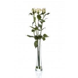 Композиция Ease white (Роза бело-зеленая)