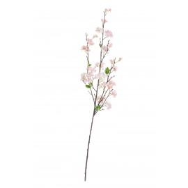 Ветка Сакуры нежно-розовая Дворец императора средняя