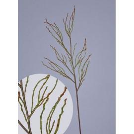 Ветвь зелено-коричневая