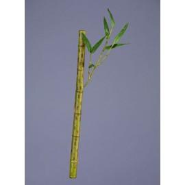 Бамбук стебель длинный светло зеленый с веточкой