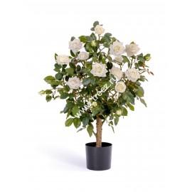 Роза куст Большой белый 100 см