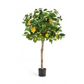 Лимонное дерево с плодами 120 см