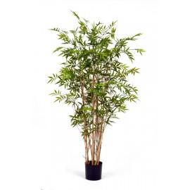 Бамбук Новый Японский Элегант 150 см
