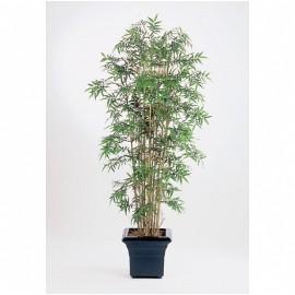 Бамбук Новый японский 140 см