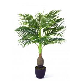 Бутылочная пальма в-120 см