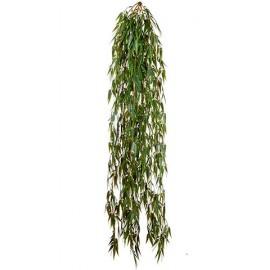 Бамбук ампельный большой 100 см