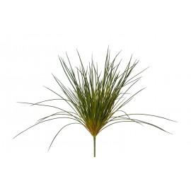 Трава Оньон Голд куст зеленый 38 см