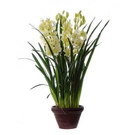 Орхидея Цимбидиум куст белый большой в кашпо 115 см