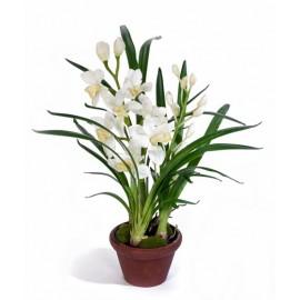 Орхидея Цимбидиум белая 67 см 2 ветки в кашпо