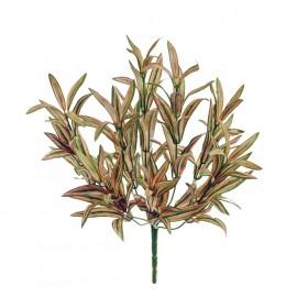 Спайдер-драцена нежно-желто-зелено-розовый куст 30 см