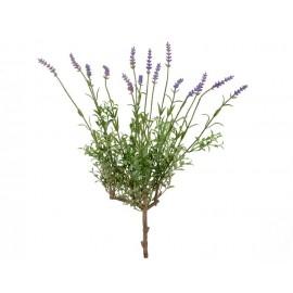Лаванда куст со св.сиреневыми цветами 53 см