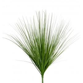 Трава Осока зеленая куст большой 60 см