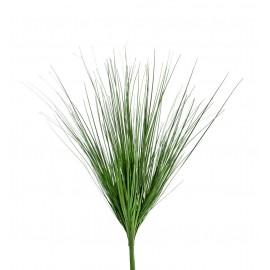 Трава Осока зеленая куст 45 см