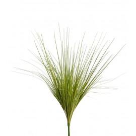 Трава Осока светло-зеленая куст 45 см