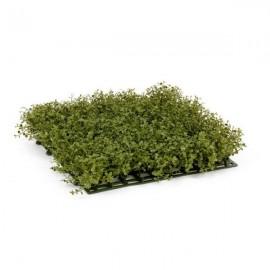 Газон-коврик Рясковый Мох 25,5 х25 см