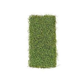 Мох рясковый св.зеленый (теплый оттенок) 50х100 см