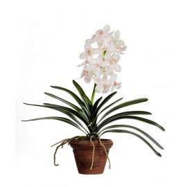 Орхидея Ванда кремовая с розовой крапинкой 43 см в терракот.кашпо