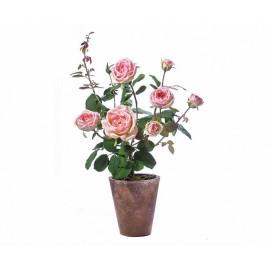 Роза куст нежно-розовый 58 см в высоком св.терракот.кашпо