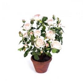 Роза белая с нежно-розовым 40 см в кашпо