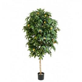 Мандарин Оранж 110 см