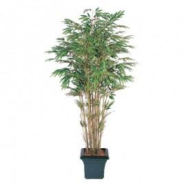 Бамбук натуральный 150 см
