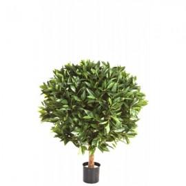 Лавр (nobilis) круглый 60 см