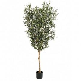 Олива натуральная с плодами 120 см