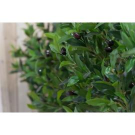 Олива натуральная с плодами 150 см